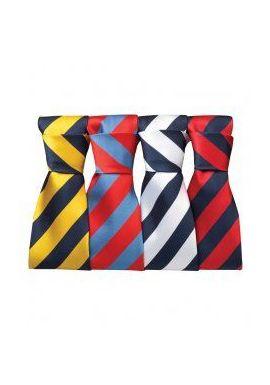 Premier Bold Stripe Tie